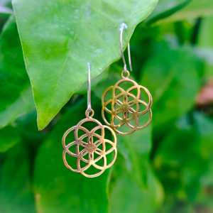 Gold Plated Brass Seed of Life Earrings